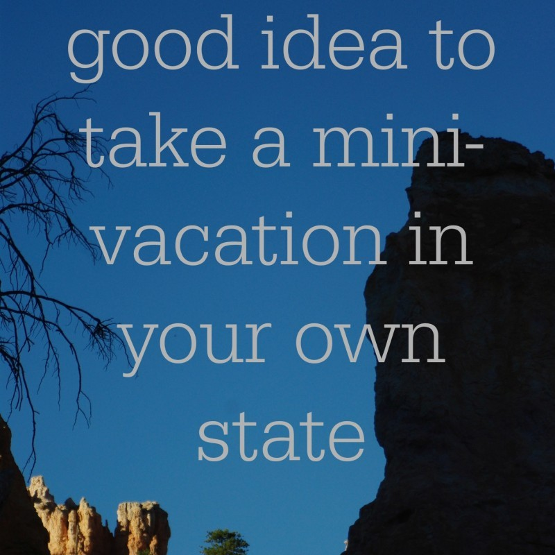 TAKING A MINI VACATION IN YOUR OWN NECK OF THE WOODS