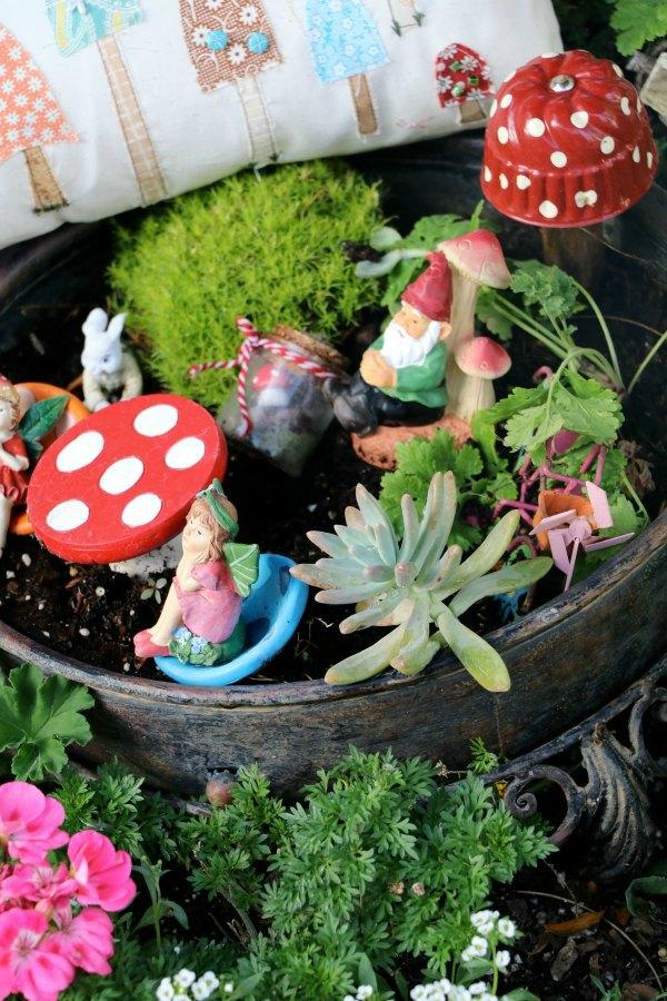 mushroom9