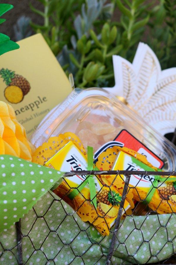 pineappleparty.45